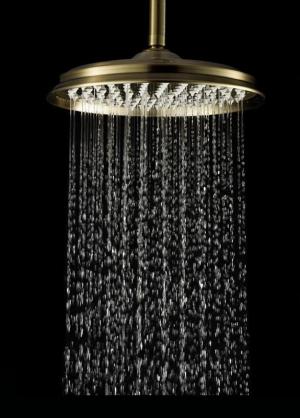 Тропический душ Elghansa Shower Head CD-220 Bronze