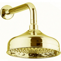 Тропический душ Webert AC0015010 Золото