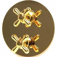 Смеситель теромстаический  для душа Webert Armony AM970903010 Золото