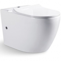 Унитаз-компакт (чаша) Bravat Gina CX01008UW-PA-ENG Белый